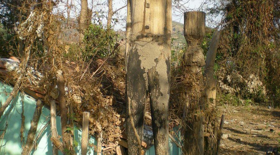 Nghệ thuật tạc tượng gỗ dân gian ở Kon Tum
