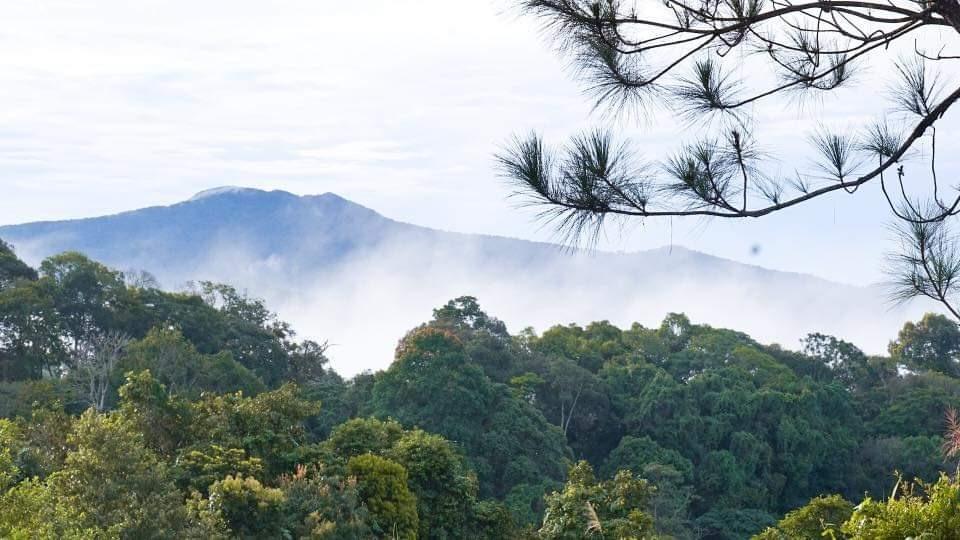 Mây núi trôi bảng lảng ở núi rừng Măng Đen. Ảnh Minh Châu