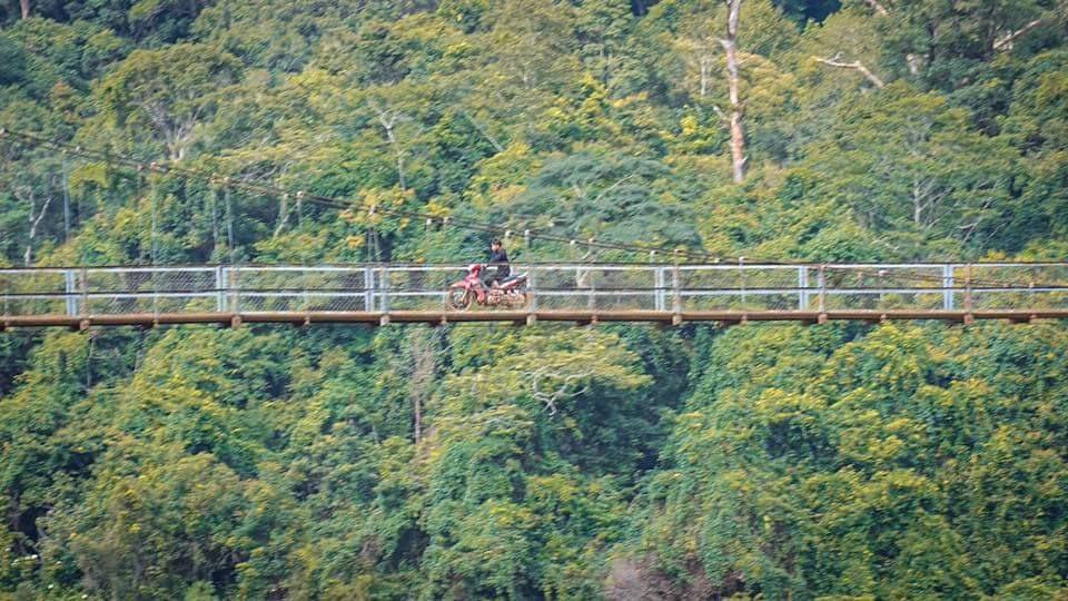 Ở Măng Đen có các cây cầu dây cáp băng qua suối. Ảnh Minh Châu