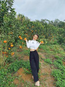 Mareeba Orchard Mang Den 12