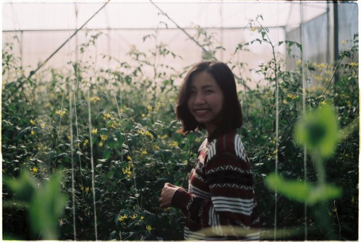 Hướng dẫn Check in vườn cam Măng Đen