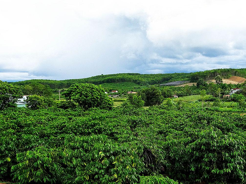 Huyện Đăk Hà