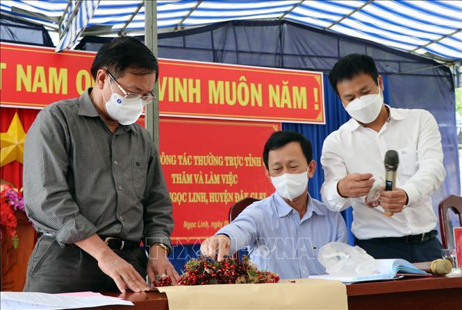 Kon Tum: Nan giải bảo vệ thương hiệu sâm Ngọc Linh